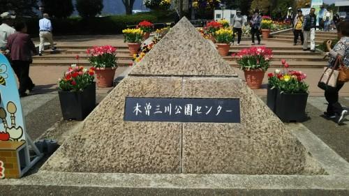 DSC 2008 500x281 無料で遊ぶ!木曽三川公園センターにチューリップを見に行きました♪