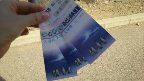 DSC 0653 500x281 のとじま水族館のイルカショーが楽しい♪宿泊は金波荘がおすすめ☆