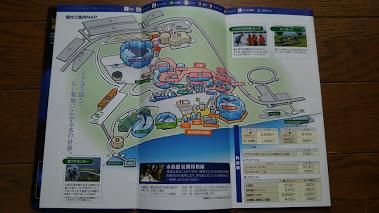DSC 2705 のとじま水族館のイルカショーが楽しい♪宿泊は金波荘がおすすめ☆