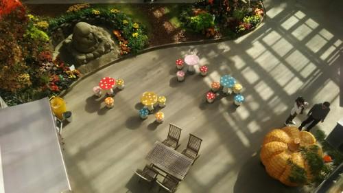 DSC 3759 500x281 花フェスタ記念公園「秋のバラ祭り2017」駐車場情報も♪