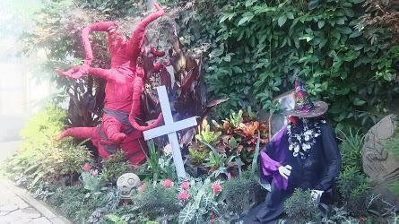 DSC 3761 花フェスタ記念公園「秋のバラ祭り2017」駐車場情報も♪